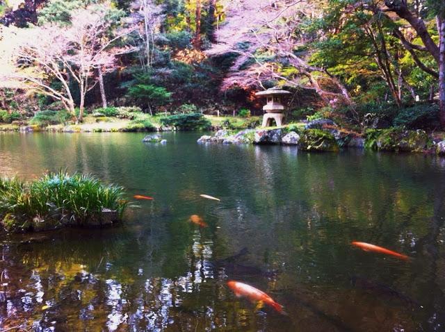 tempio-shinshoji-13