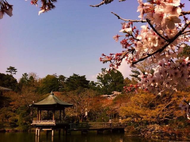 tempio-shinshoji-14