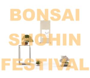 Bonsai Shohin Festival 2018 @ Parabiago (MI)