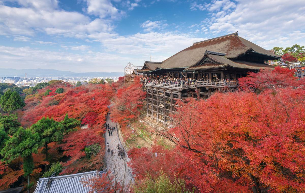 previsioni foglie rosse giappone autunno 2018