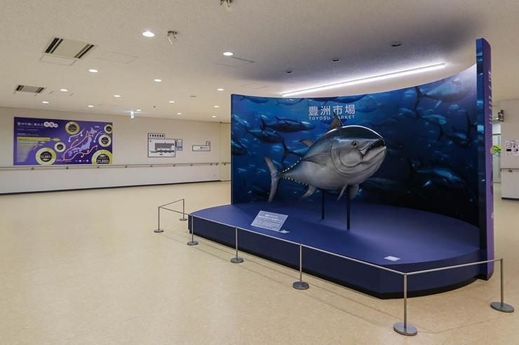 Stanza informazioni asta dei tonni
