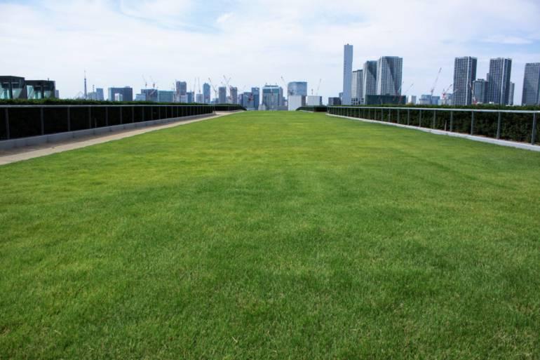 giardino pensile sul tetto di toyosu 2