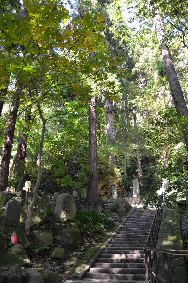 scalini yamadera yamagata autunno