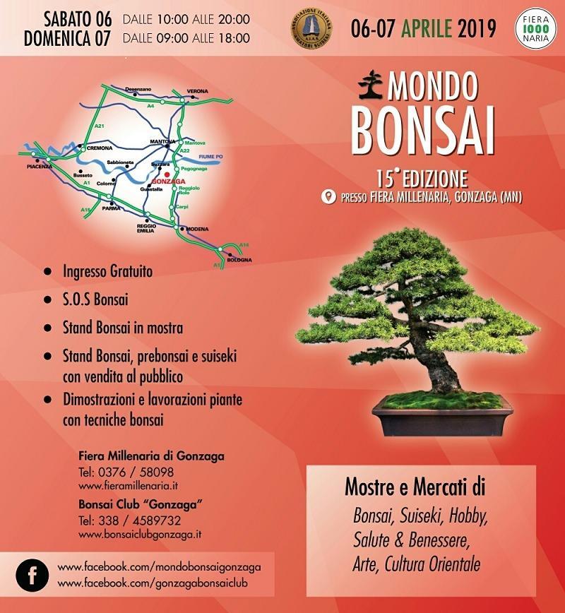 Mondo bonsai 15ma Edizione @ Gonzaga (MN)