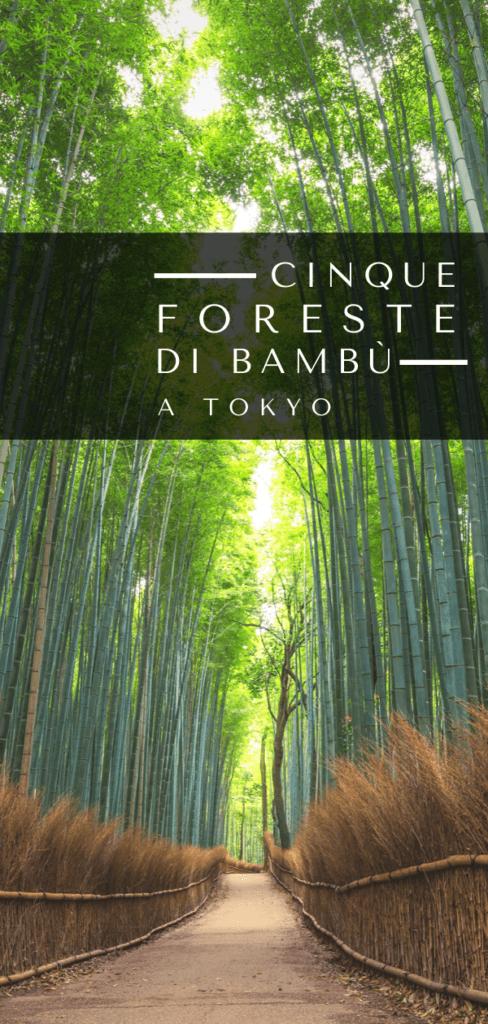 foresta bambu tokyo