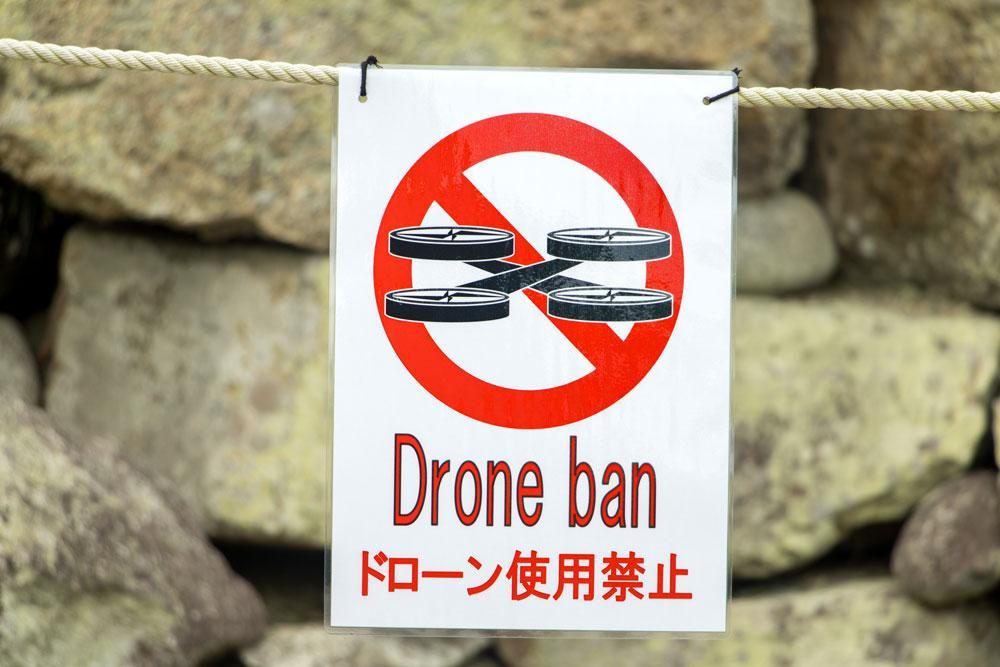 portare drone viaggio in giappone volare